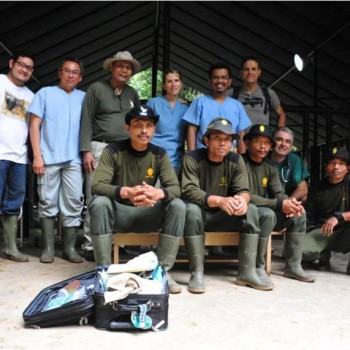 Left to Right (above) Dr. Bongot, Dr. Agil, pak Widodo, Dr. Hoffman, Dr. Dedi and Dr. Walker and (below) Sugianto, Edy Parwito, Iswanto, Dr. Benn and Giono