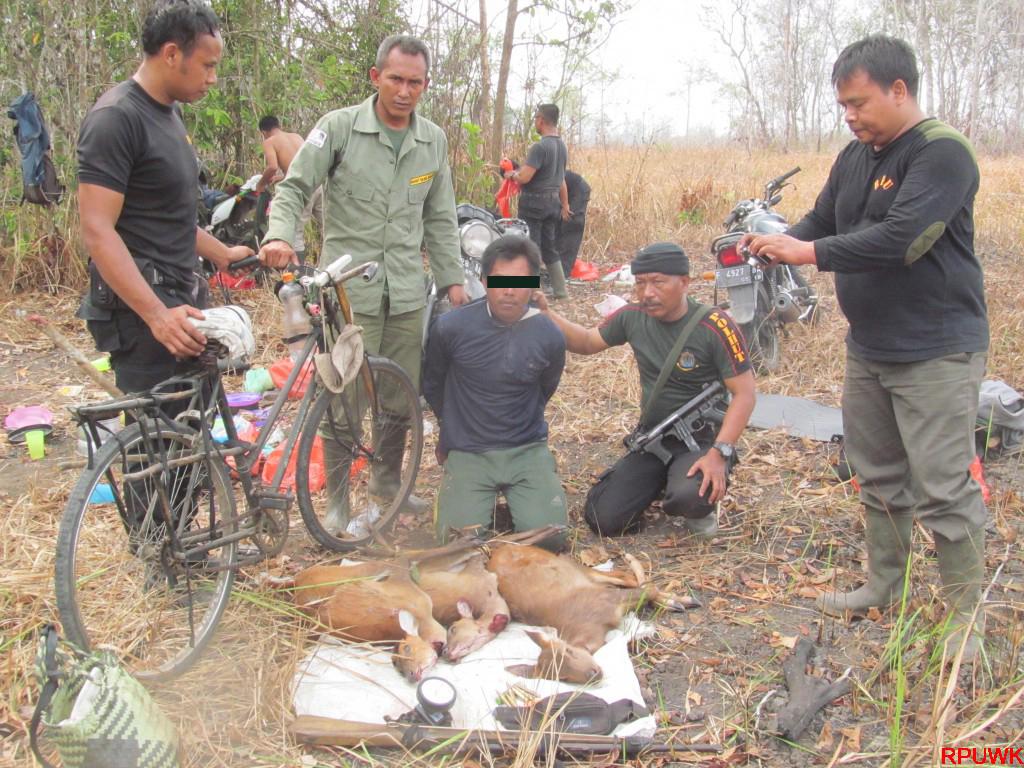 Perburuan Senpi dan Pembakaran Hutan (10)