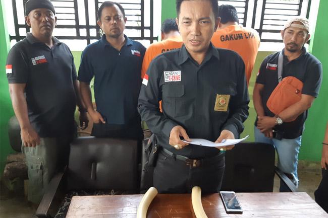 ©tribunnews Lampung